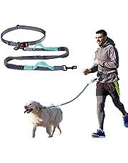 YIHATA Hands Free Dog Leash for Medium and Large Dogs,Running Walking Jogging Training Hiking, Retractable Bungee Dog Running Leash (ALemon Green)