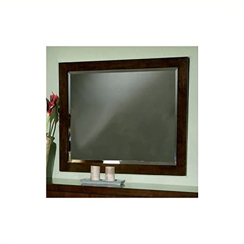 Coaster Home Furnishings 200714 Contemporary Mirror, Cappuccino