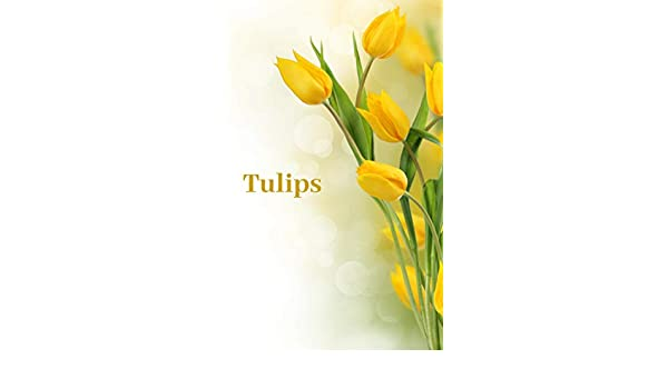 Flowers Tulips A Complete Gardening Guide For Tulip Flower Types