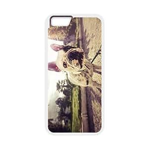 "Bulldog Dog Wholesale DIY Cell Phone Case Cover for iPhone6 Plus 5.5"", Bulldog Dog iPhone6 Plus 5.5 by mcsharks"