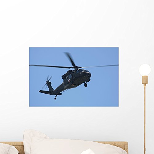(Wallmonkeys Uh-60l Black Hawk Helicopter Wall Mural Peel and Stick Vinyl Graphics (18 in W x 12 in H) WM119968)