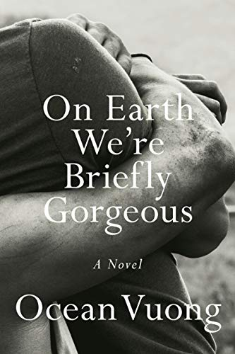 On Earth We're Briefly Gorgeous: A Novel (Best New Erotic Novels)