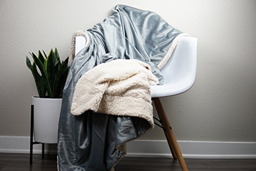 Micro Mink Sherpa Throw (Terry Town DP1709-Gray-1 Micro Mink Sherpa Throw, Gray)