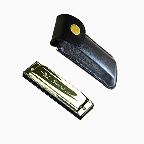 WANDIC Diatonic Harmonica Standard 10 Hole Harmonica with Case Key of C for Beginner Students Kids Gift Gold