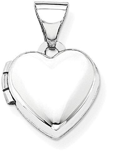 IceCarats ICE CARATS 14k White Gold Heart Shaped Photo Pe...