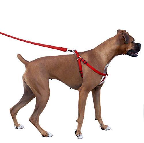 Majestic Pet Dog Harness-Best No Pull Harness for All Dogs-Sizes Large, Medium, Small-Adjustable and Heavy Duty No-Pull Leash & Harness & Walking Collar-COMBO [HARNESS-15x25 & LEASH-5/8x6ft]-Red (Pitbull Dog Harness Small compare prices)