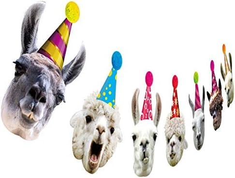 Amazon Com Llama Birthday Garland Funny Alpaca Face Portrait Bunting Hilarious Bday Party Decoration Toys Games