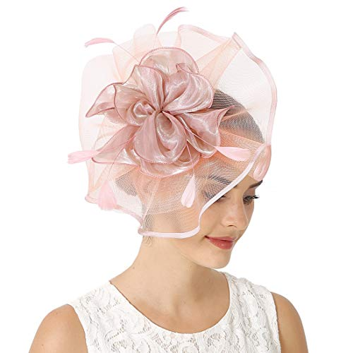 Fascinators for Women Feather Cocktail Flower Mesh Tea Party Church Hat Kentucky Derby Headwear Pink]()