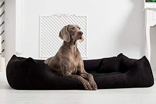 Tierlando Orthopedic Dog Bed Pluto Ortho Visco Visco Foam Made of Soft Velour Black, L 105cm