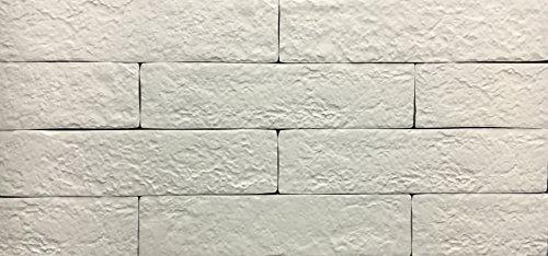 Brick Blanco 2 x 10