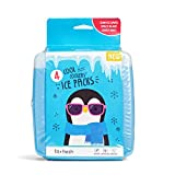 Fit & Fresh 336KFF Cool Coolers Ice Packs, 4 pack,...