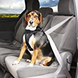 Petco Premium Seat Belt Harness