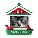 Hallmark Kitties - Best Reviews Guide