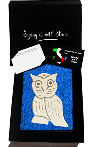 Mother's Day Gift Ideas - Grandpa Owl Handmade in Italy - Symbol of Wisdom & Truth - Elegant gift box with blank message card - Rare stone contains fossil fragments - graduation teacher (West Highland Terrier Poodle)