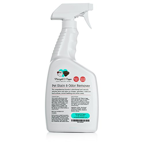 Pet Friendly Rug Cleaner: Professional Strength Stain And Odor Eliminator