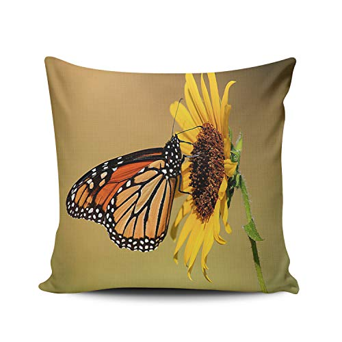 WEINIYA Home Custom Decor Butterfly Kiss The Sunflower Throw Pillow Cover Exquisite Double Sides Printed Patterning Square 24x24 Inches