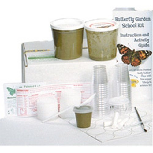 Insect Lore Caterpillar & Butterfly Garden Refill Voucher For School Kit by Insect Lore