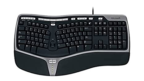 fe2a7c224c3 Amazon.com: Microsoft Natural Ergonomic Keyboard 4000 for Business - Wired:  Electronics
