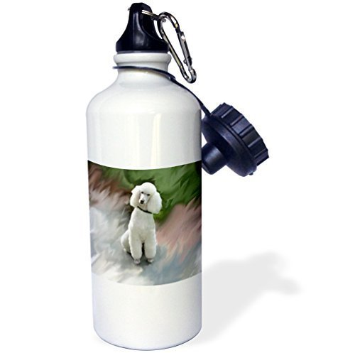 (Moson Water Bottle Gift for Kids Girl Boy, White Poodle Stainless Steel Water Bottle for School Office Travel 21oz)