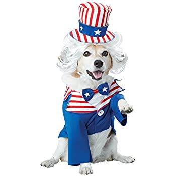 Amazon.com : Rubies Costume Company Uncle Sam Hat with Beard for ...