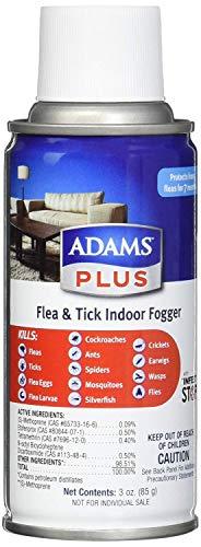 Buy amazon flea bomb
