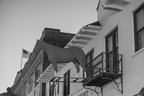 24 x 36 B&W Giclee Print of Horse figure, a longtime signature of Fincher's White Front Western Store on Exchange Avenue in the Stockyards District of Fort Worth, Texas 2014 - On Avenue Stores Worth