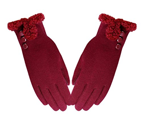 Iuway Women's Touch Screen Gloves Fleece Lined Thick Warmer Winter Texting Gloves (Red) (Womens Gloves Fleece)