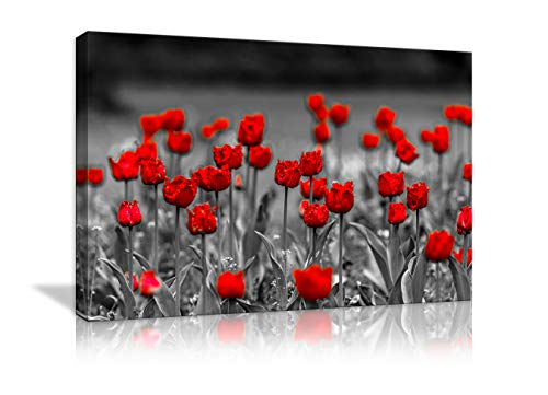 AMEMNY Red Poppy Abstract Flowers Wall Art Painting Canvas Black and White Red Poppy Flowers Scenery Landscape Flower Picture Wall Decor for Living Room Framed Ready to Hang