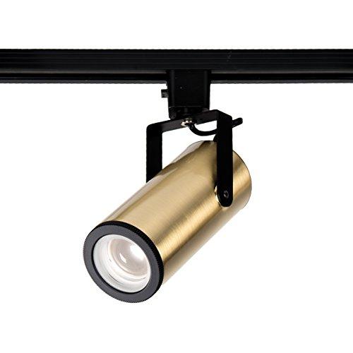 WAC Lighting H-2020-940-BR LED2020 Silo X20 Beamshift Head H Track Fixture, Brushed Brass