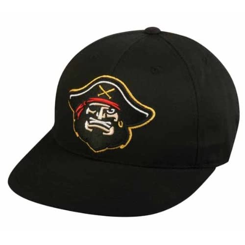 84a315e1d 12 Best Minor League Hats in 2019 | Test Facts