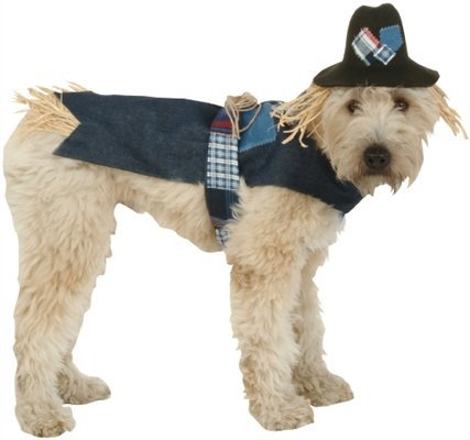 XPet Halloween Scarecrow Costume for Pets, Small/Medium -