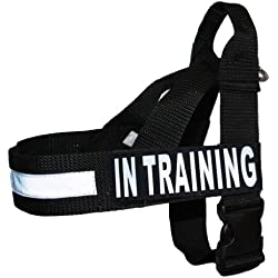 IN TRAINING Nylon Strap Service Dog Harness No Pull Guide Assistance comes with 2 reflective IN TRAINING removable patches. Please measure your dog before ordering.