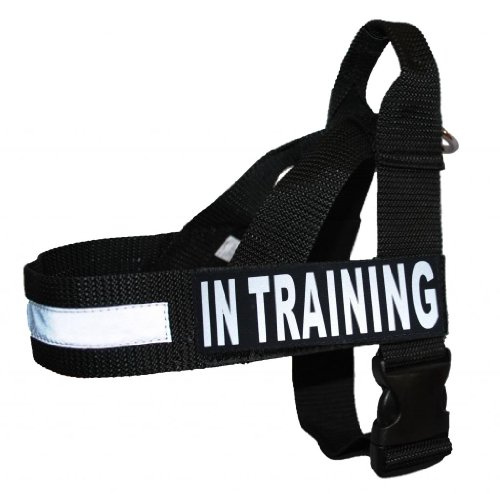 (in Training Nylon Strap Service Dog Harness No Pull Guide Assistance Comes with 2 Reflective in Training Removable Patches. Please Measure Your Dog Before Ordering.)