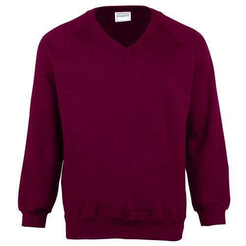 (Maddins Mens Colorsure V-Neck Sweatshirt (L))