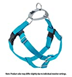 Purchase Direct from Freedom Harness Inventor Freedom No-Pull Harness ONLY (1' Wide Medium (MD), Turquoise w/Silver Loop)