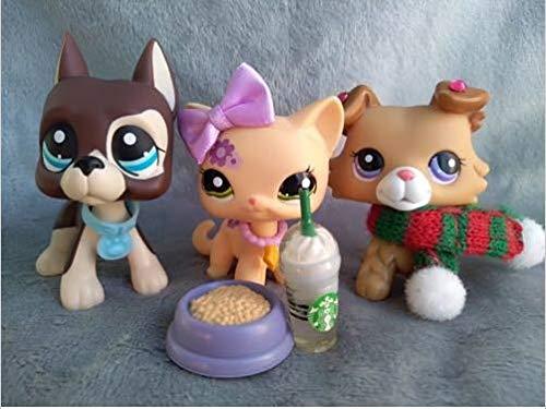 Pet Shops LPS Lot Littlest Short Hair Cat Collie Great Dane Dog + Accessories