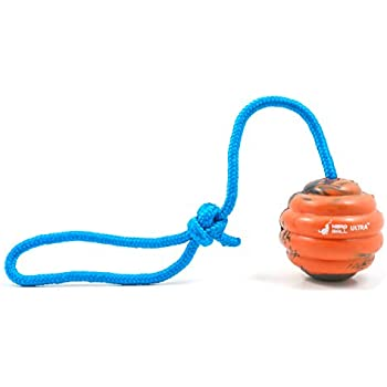 The Nero Ball ULTRA Dog Training Ball on Rope
