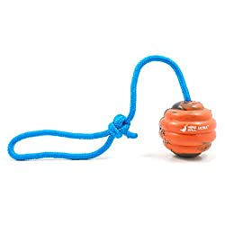 41Pf0YJUkZL. SS250  - Nero Ball Ultra Dog Training Ball On A Rope