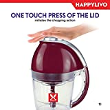 HappyLivo Hachi, 200 Watt Electric Vegetable Chopper with SwordFin Blade, 1 Litre, Burgundy