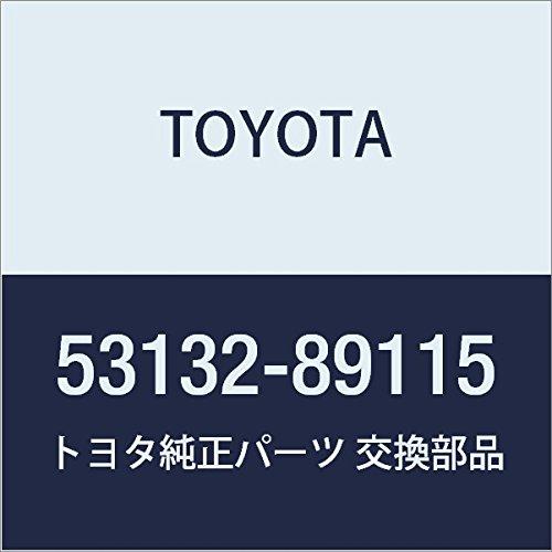 Toyota 53132-89115 Headlamp Door