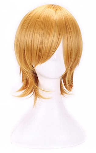 AneShe Men's Short Straight Layered Hair Anime Cosplay Costume Wig (Golden)