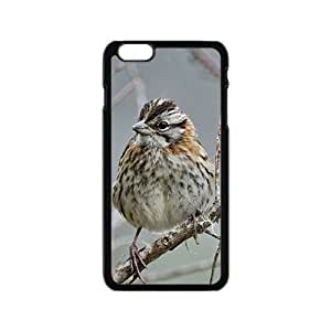 Wild Pigeon Hight Quality Plastic Case for Iphone 6