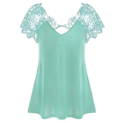 Jesper Womens Fashion V-Neck Plus Size Lace Tunic Short Sleeve Trim Cutwork T-Shirt Tops Sky ()