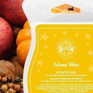 Scentsy Bar (Autumn Blaze Maple) (Harvest Maple Syrup)