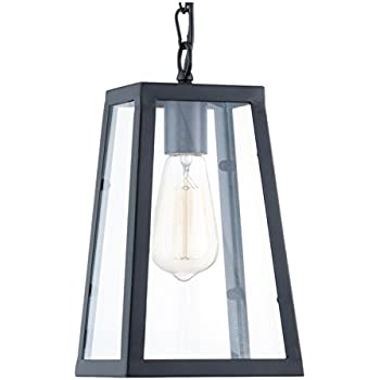 light society serendipity pendant light matte black with clear glass lsc113