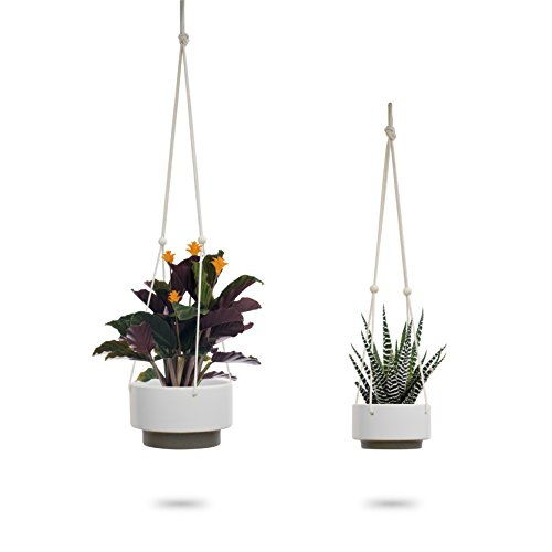 Ceramic Hanging Planter | White Gray Succulent Pots | Round Plant Holder Container | Cactus Pot with Cotton Rope Hanger | Indoor Outdoor Decor | 23 Bees (2 Pack)