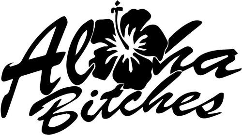 BEARGRAPHIX Aloha Bitches Hawaii Decal Sticker Car Motorcycle Truck Bumper Window Laptop Wall Décor Size- 8 Inch Wide Gloss Silver Color
