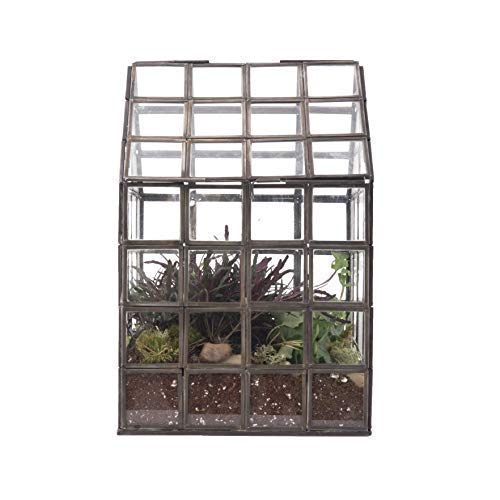 Urban Born- Handmade Glass Terrarium, Grid Pattern Greenhouse- 8''x8''x12'' by Urban Born