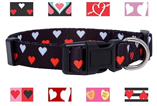 Pictures of Native Pup Valentine's Day Heart Dog White and Red Hearts 1