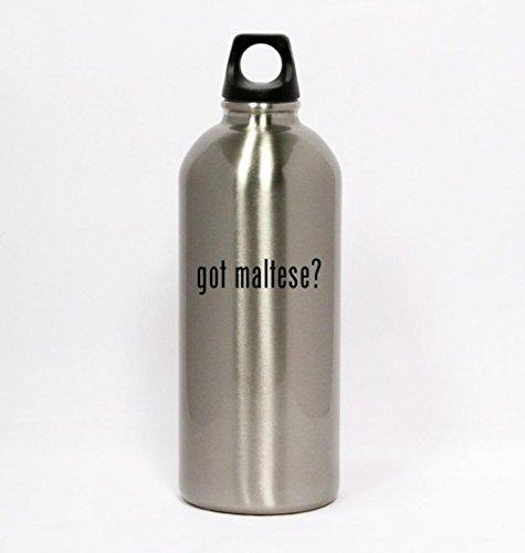got maltese? - Silver Water Bottle Small Mouth 20oz (Got Maltese)